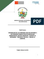 Perfil Tecnico Adulto Mayor Hidroponia 2016