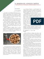 Sep.2012- Sistema de Desintoxicacion y Regeneracion 2