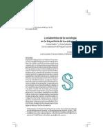 Laberintos de La Sociologia en Sociológica