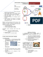 Free Living Pathogenic Amoeba