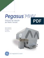 Pegasus - Induction Motor