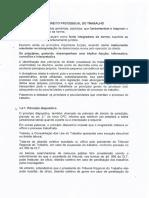 Principios Informadores Do Direito Processual Do Trabalho