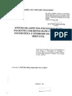 MagalhaesKarinadeCarvalho.pdf