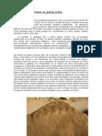 Materiales Para Albañilería
