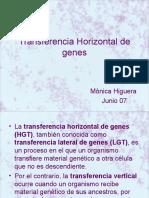 Transferencia Horizonta