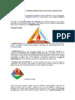 Teoria Del Fuego Duan