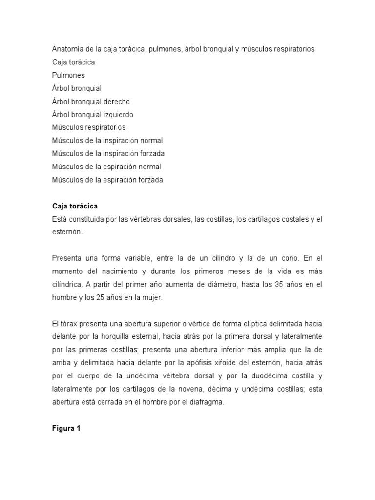 Anatomía de La Caja Torácica