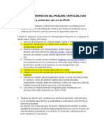 Determinacion Del Problema-2