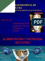 Nutricion y Alimentacion Cuyes