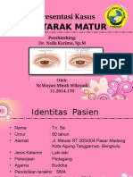 1325 ppt revisi