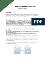 Proceso de Cristalizacion Del Sal Informe Quimica