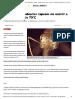 As Formigas Prateadas Capazes de Resistir a Temperaturas de 70ºC - Planeta Ciência - Geral - Zero Hora - Planeta Ciência_ Notícias - Zero Hora