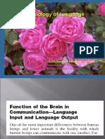 Physiology of Speech