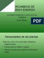 INTERCAMBIOS DE MATERIAY ENERGIA Fotosintesis sexto basico.ppt