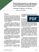 Relacion vastago-raiz en prosopis