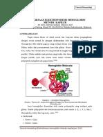 Tutor Hema Elektroforesis Hb Metode Kapiler (Revisi)