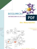Bioquimica Carbo i