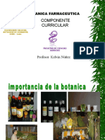 Botanica Clase