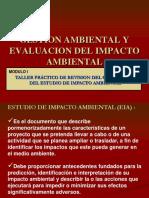 EIA puentes.pdf