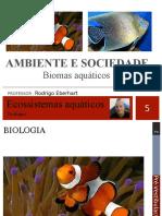 Aula 5 e 6 Ecologia