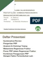 Sistematik review