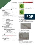 Enterobius