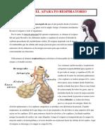 TEMA+6.-+SISTEMA+RESPIRATORIO.pdf