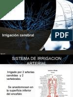 Clase Irrigación del Sistema Nervioso