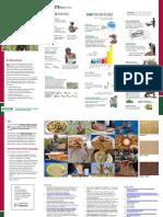 Flyer on Smart Food