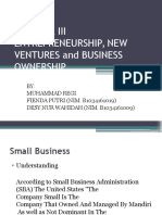 Etrepreneurship, New Ventures, And Business Ownership