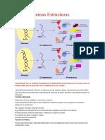 Proteínas Estructuras