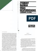 Vidas Desperdiciadas - CAP 4.pdf