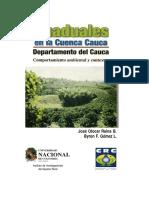 Graduales en La Cuencia Cauca, Comportamiento Ambiental y Contexto