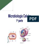 5 Microbiologia Celular 1 Parte