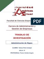 trabajo de investigación de Planes de Negocio - Tatiana Peña Carbajal.docx