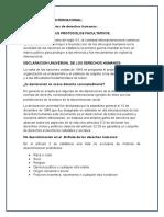 Sustento Legal Internacional