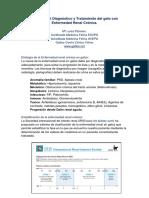 3AEnfermedadrenalcronicaengatosClaveseneldiagnosticoytratamiento.pdf