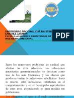 Contaminacion de Suelos Por Parasitos. [Downloaded With 1stbrowser]