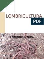 LOMBRICULTURA-DIAPO (1)