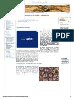 Ascidias, características generales