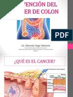 31072014_PREVENCION_DEL_CANCER_DE_COLON_ESC_DE_EXCELENCIA.pdf