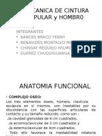 Biomecanica de Cintura Escapular y Hombro