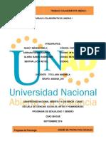 Unidad 1 Trabajo Colaborativo- Diseño de Proyectos Sociales