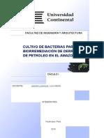 CAPITULO-I-MODIFICADO (1)