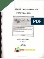 Algoritmos y Programación Pracrica con C++ - Ruiz