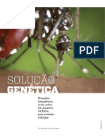 Solução Genética Mosquito Transgênicos 076-079-180