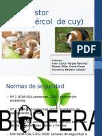 Biodigestor La Presnetacion