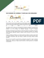 Diccionario de Hierbas y Especias Con Imágenes