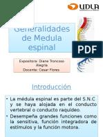 Generalidades de Medula Espinal