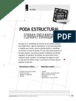 Pa-tu05 Poda Estructural Forma Piramidal